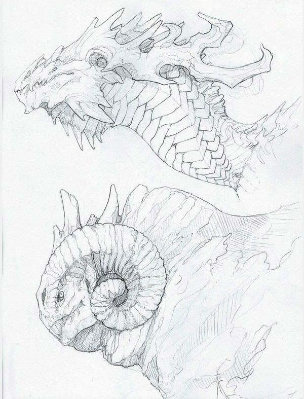 dragon head drawing reference