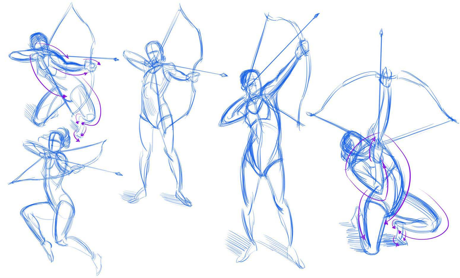Archer drawing reference