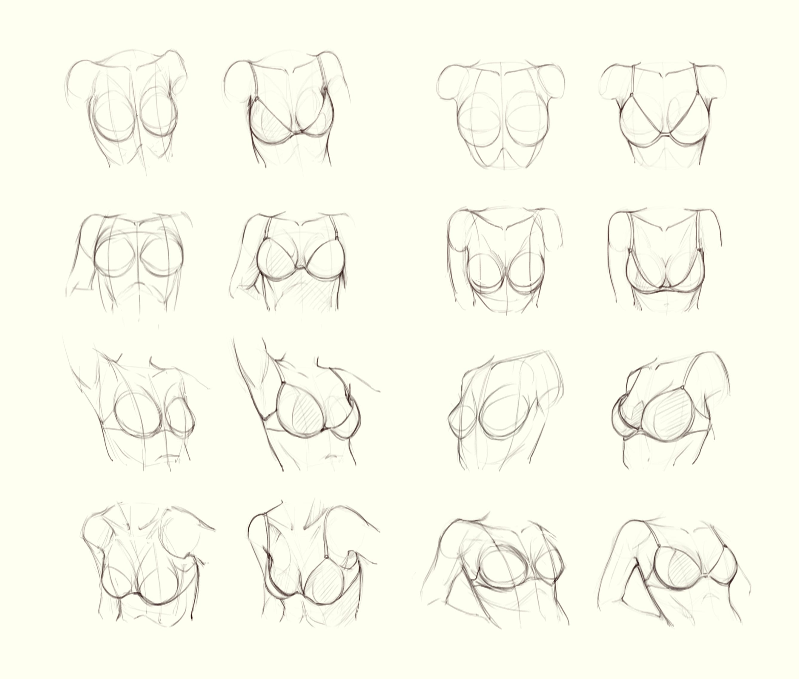 Bra drawing reference