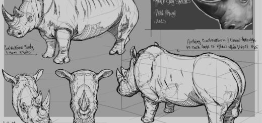 Rhino drawing reference