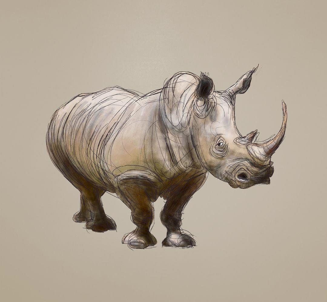 Rhino drawing reference