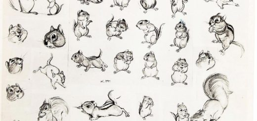 Chipmunk drawing reference