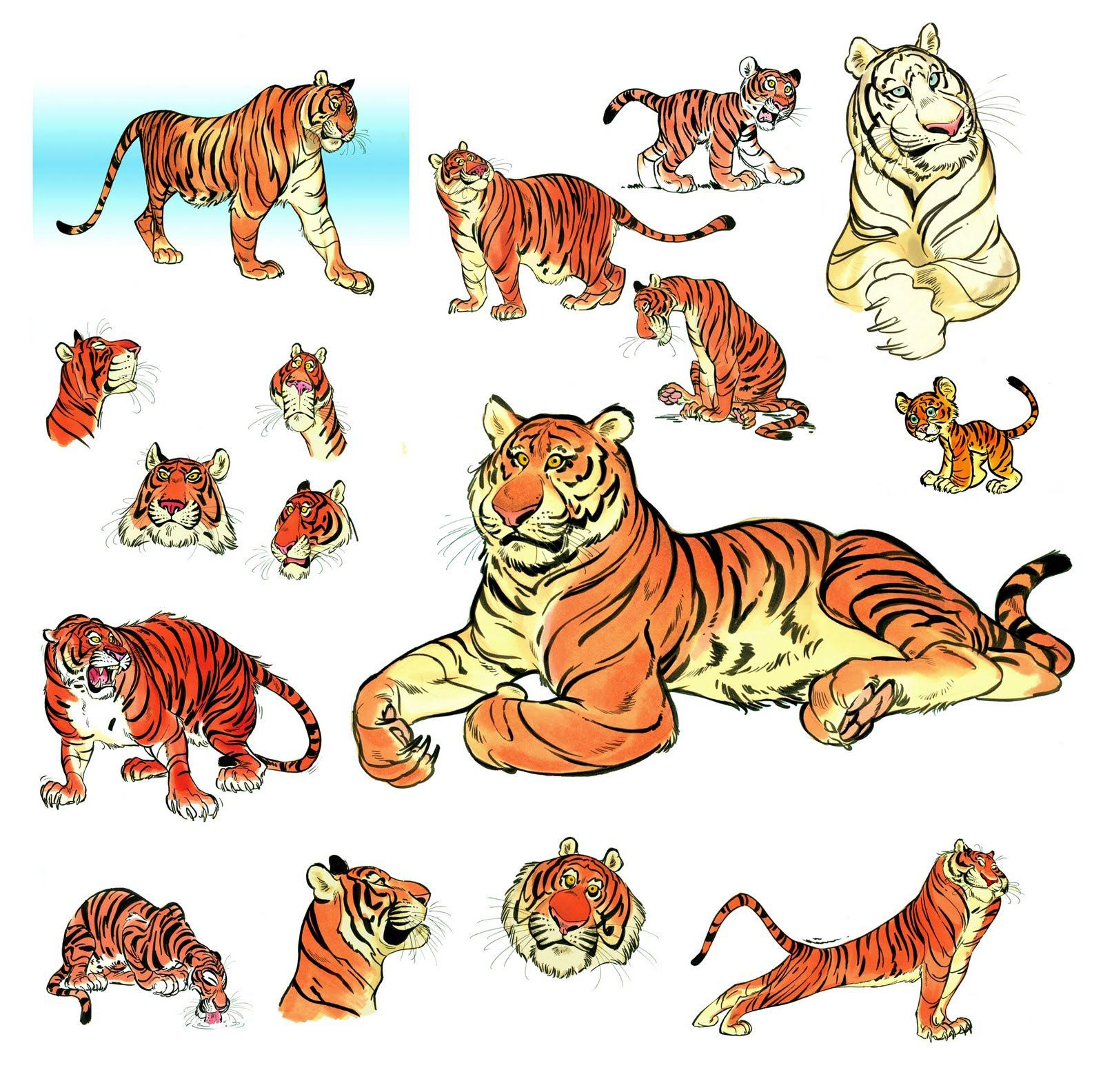Tiger drawing reference