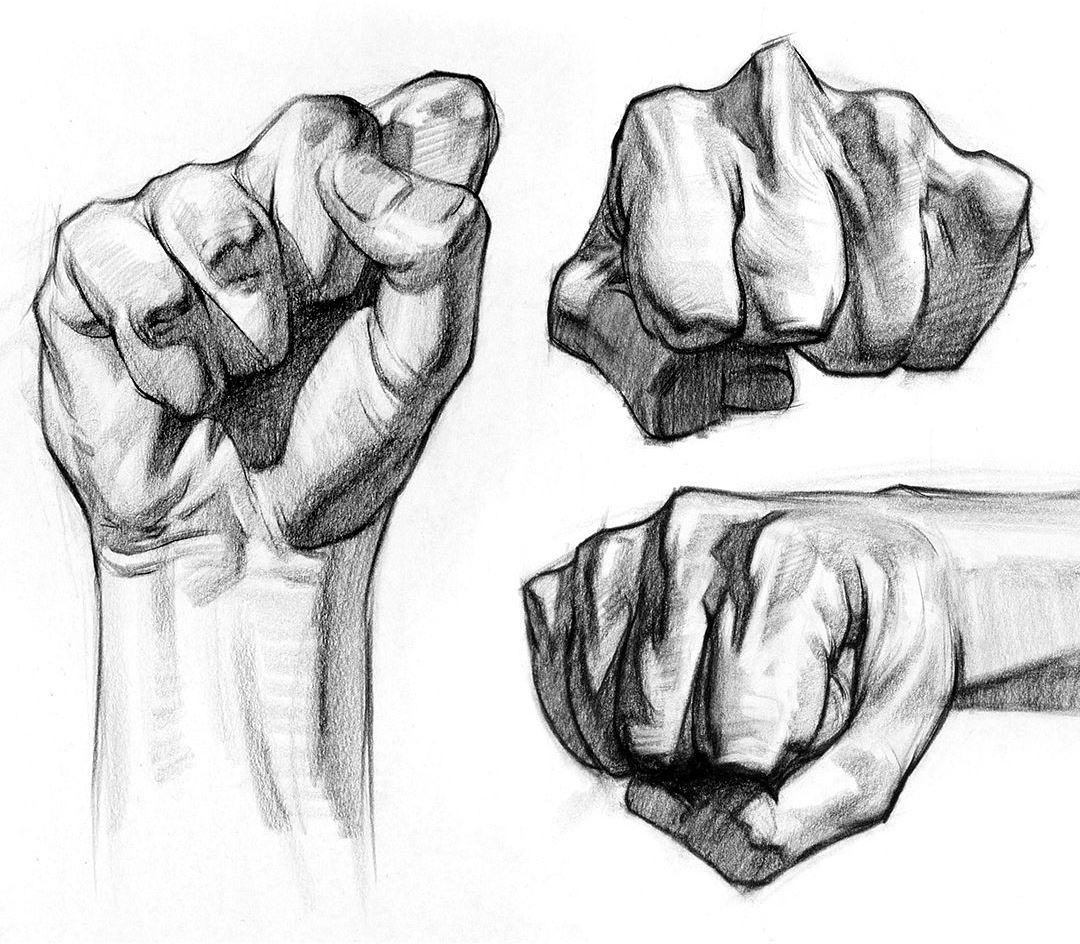 Fist drawing reference
