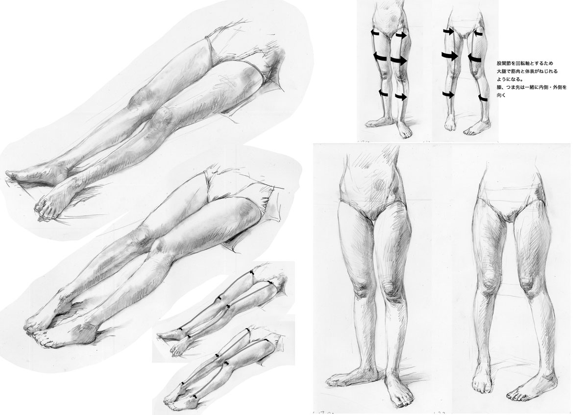 female leg drawing reference