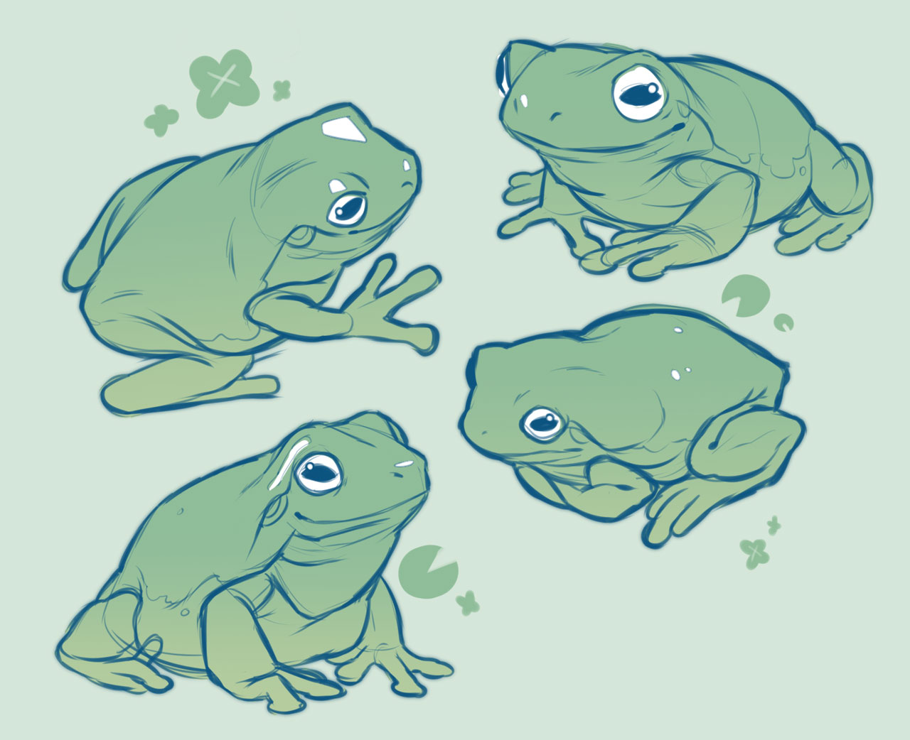 Frog drawing reference