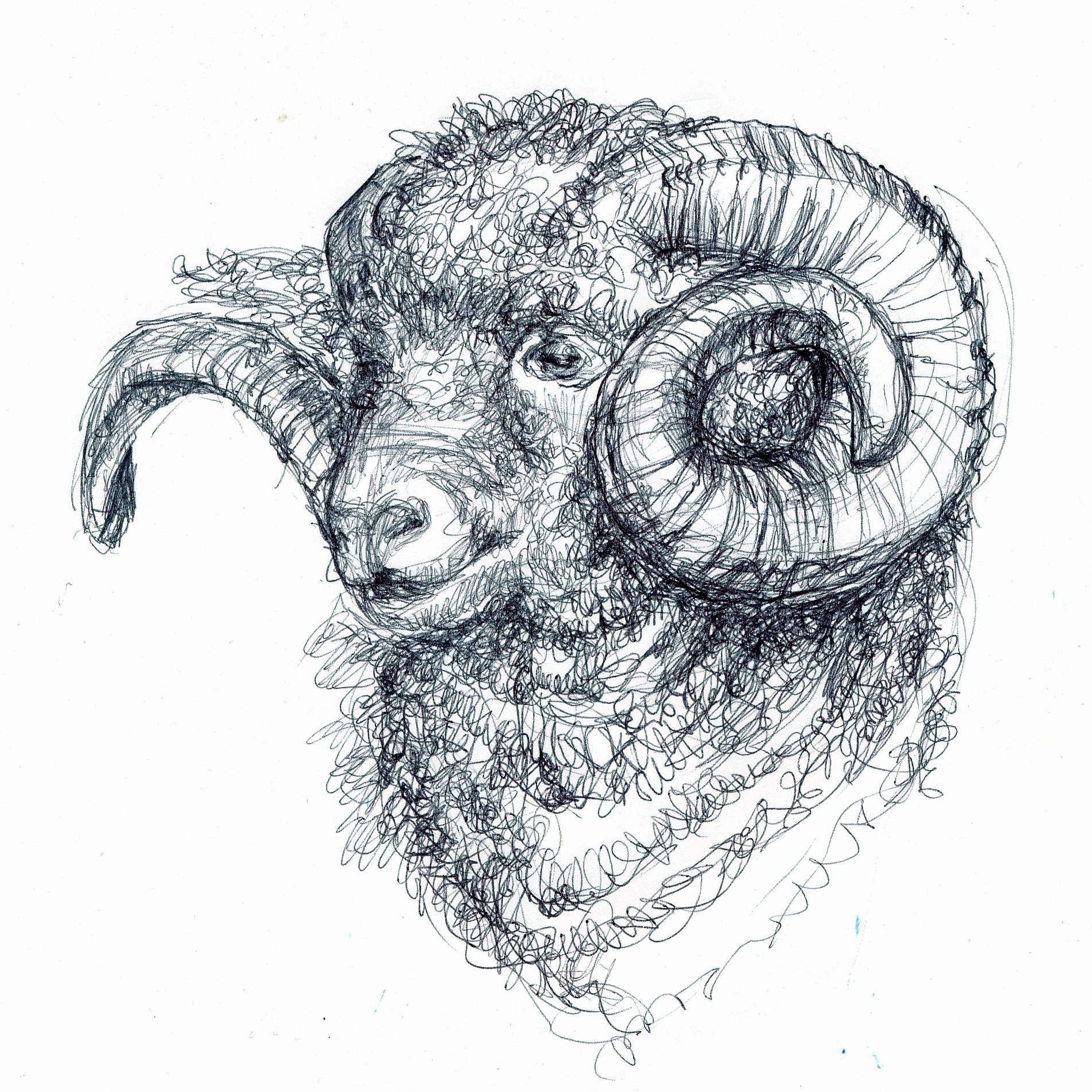 Ram drawing reference