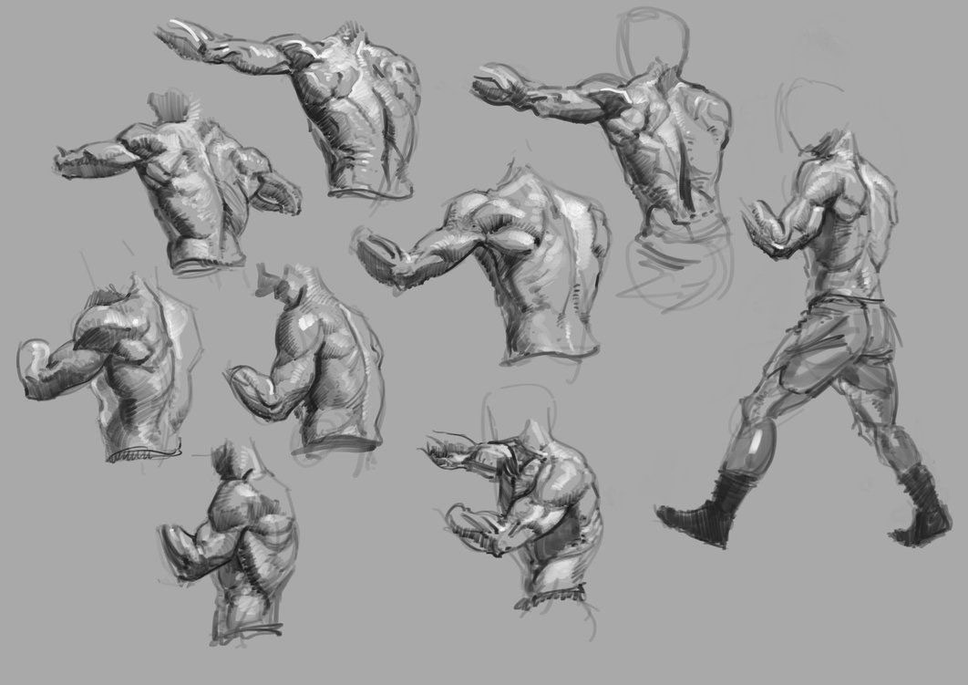 Boxing drawing reference